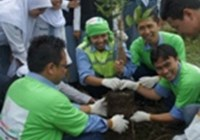 indonesia tree planting.jpg